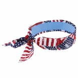 ERGO-6700CT-Stars-Stripes
