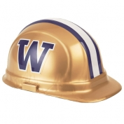 University of Washington Team Hard Hat