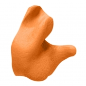 Radians CEP001 Custom Molded Earplugs - Orange